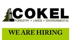 Cokel Forestry Lands and Environmental
